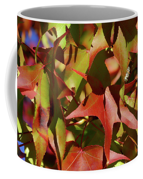 Coffee Mug featuring the photograph Don't Leave Me Alone by Donna Blackhall