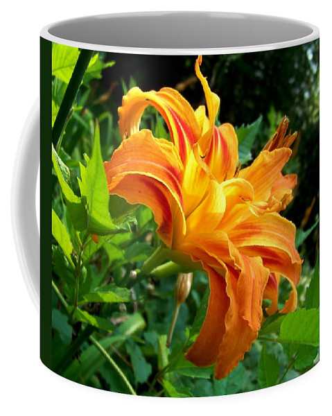 Flower Coffee Mug featuring the photograph Double Blossom Orange Lily by Jai Johnson