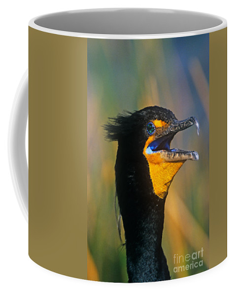Double-crested Cormorant Coffee Mug featuring the photograph Double-crested Cormorant by John Harmon