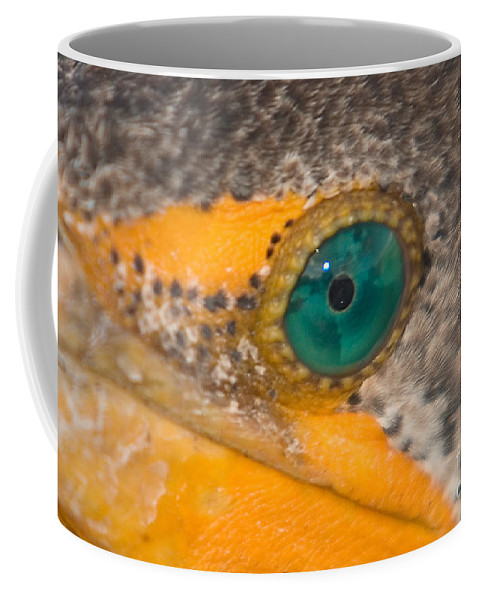 Nature Coffee Mug featuring the photograph Double-crested Cormorant's Emerald Eye by John Harmon