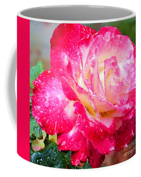 Fine Art Photography Coffee Mug featuring the photograph Double Delight by Patricia Griffin Brett