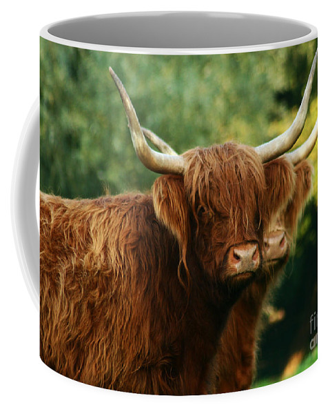 Cow Coffee Mug featuring the photograph Double Horny Portrait by Angel Ciesniarska