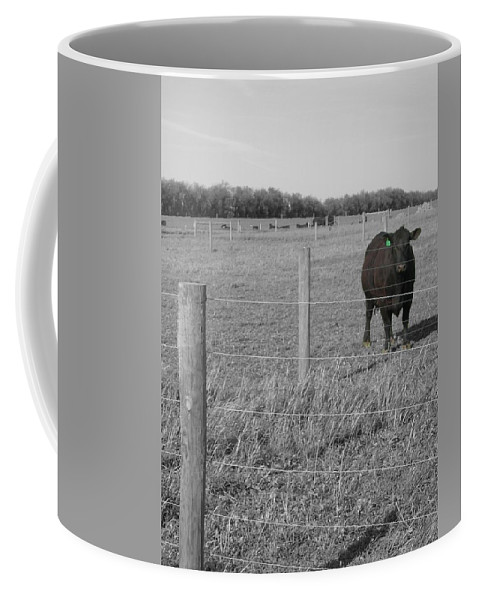 Rural Coffee Mug featuring the photograph Double Post by Dylan Punke