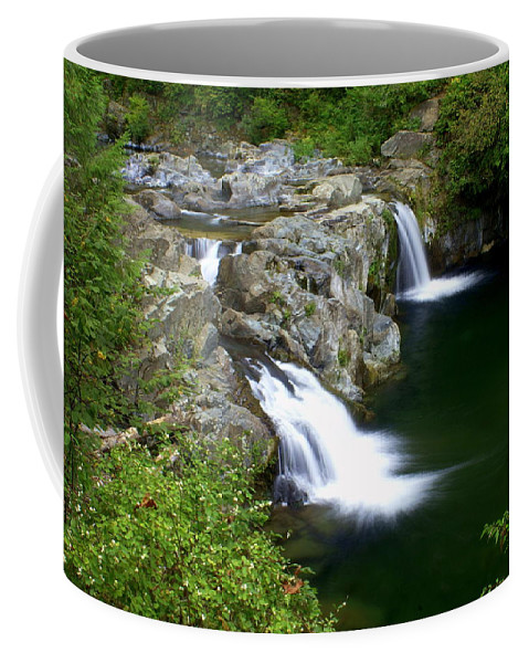 Waterfall Coffee Mug featuring the greeting card Double Twin 2 by Marty Koch