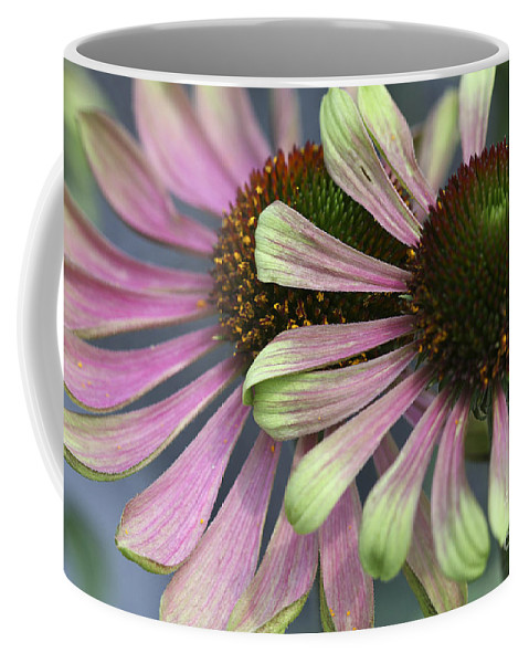 Flower Coffee Mug featuring the photograph Double Vision Cone by Deborah Benoit