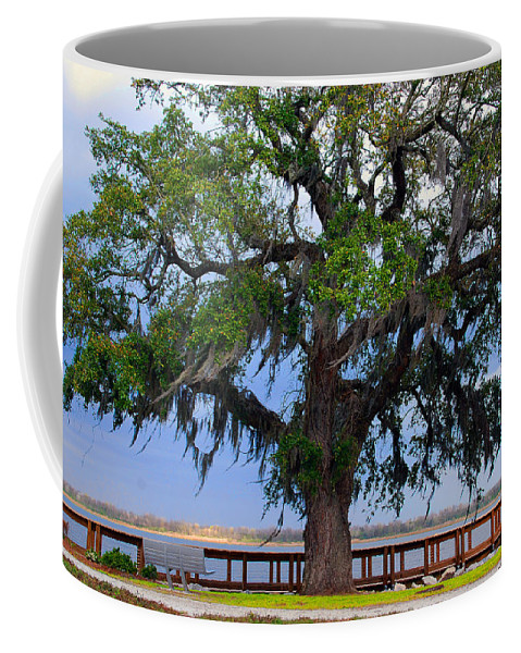 Photography Coffee Mug featuring the photograph Down By The River Side by Susanne Van Hulst