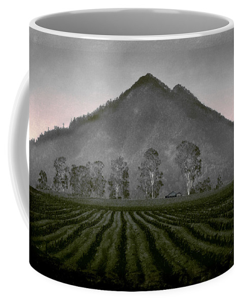 Landscapes Coffee Mug featuring the photograph Down From The Mountain by Holly Kempe