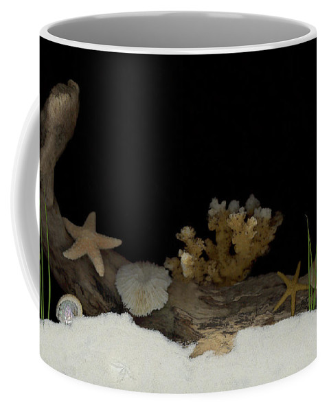 Shells Coffee Mug featuring the mixed media Down Under by Sandi F Hutchins