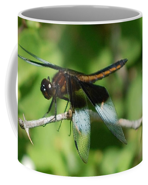 Digitall Photo Coffee Mug featuring the photograph Dragon Fly by David Lane