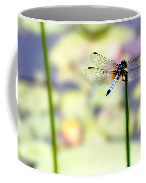 Dragon Fly Coffee Mug featuring the photograph Dragon On The Pond by Ches Black