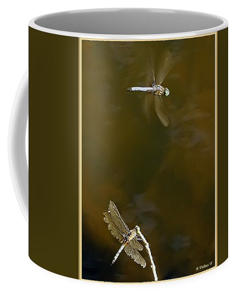 2d Coffee Mug featuring the photograph Dragonflies by Brian Wallace