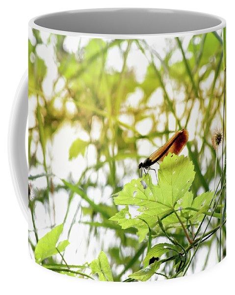 Dragonfly Coffee Mug featuring the photograph Dragonfly 02 by Romance Cartes Postales et Photographie