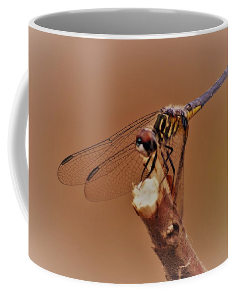 Dragonfly Beauty Coffee Mug featuring the photograph Dragonfly Beauty by Warren Thompson