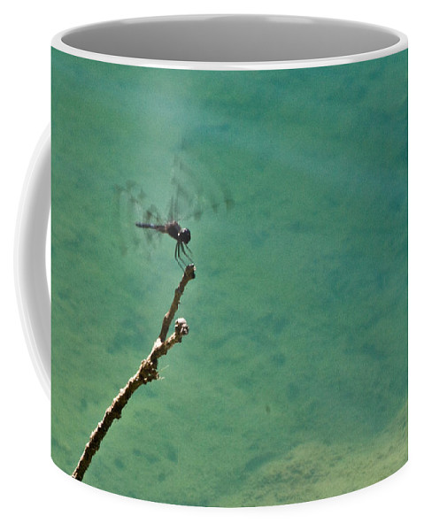 Dragonfly Coffee Mug featuring the photograph Dragonfly Exercising Wings by Douglas Barnett