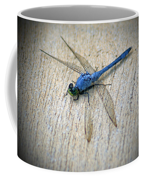 Dragonfly Coffee Mug featuring the photograph Dragonfly by Jean Haynes