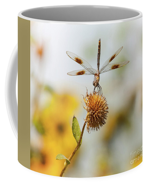 Wildlife Coffee Mug featuring the photograph Dragonfly On Dead Bud by Robert Frederick