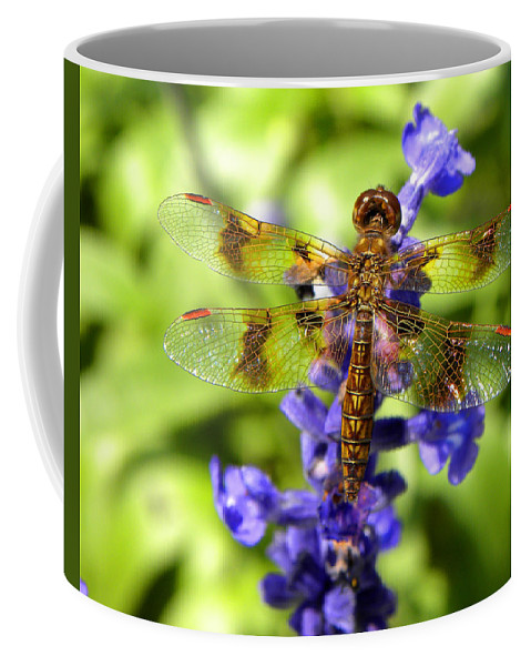 Dragonfly Coffee Mug featuring the photograph Dragonfly by Sandi OReilly