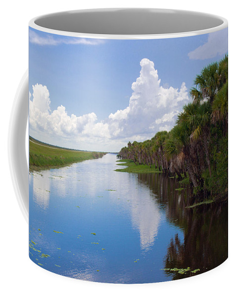 Florida; Water; Canal; Stick; Marsh; Drowned; Trees; Drown; Fellsmere; Sebastian; River; Indian; Clo Coffee Mug featuring the photograph Drainage Canals Make Farming Possible In Florida by Allan Hughes