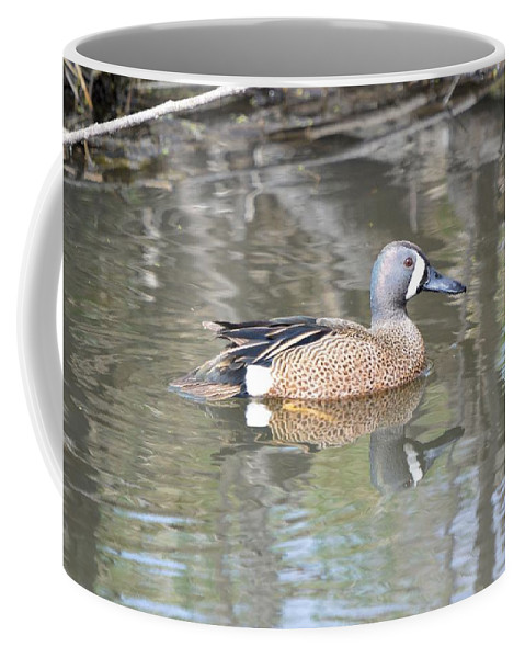 Anas Coffee Mug featuring the photograph Drake Blue Wing by Bonfire Photography
