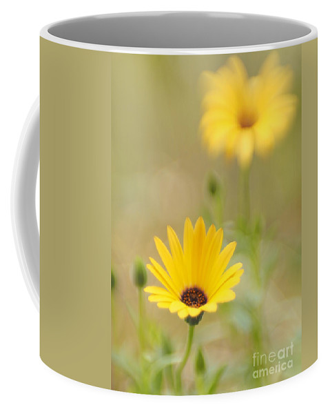 Flowers Coffee Mug featuring the photograph Dreaming Of Lemon Symphony 2 by Dorothy Lee