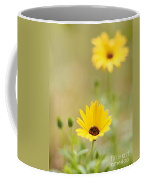 Flowers Coffee Mug featuring the photograph Dreaming Of Lemon Symphony by Dorothy Lee