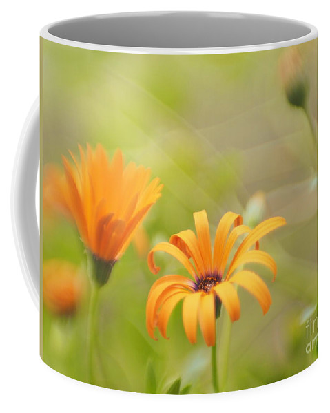 Flowers Coffee Mug featuring the photograph Dreams Of Orange Symphony In Spring by Dorothy Lee
