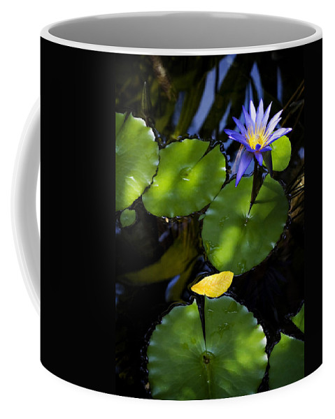 Lotus Coffee Mug featuring the photograph Dreamy Lotus by Marilyn Hunt
