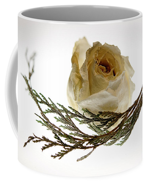 Rose Coffee Mug featuring the photograph Dried White Rose by Lois Bryan