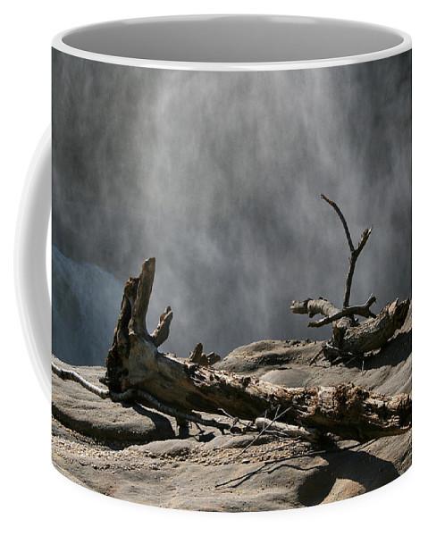 Wood Drift Driftwood Rock Mist Waterfall Nature Sun Sunny Waterful Glow Rock Old Aged Coffee Mug featuring the photograph Driftwood by Andrei Shliakhau