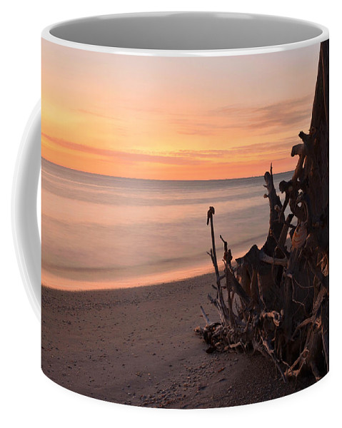 Ocean At Sunset Coffee Mug featuring the photograph Driftwood At Sunset by Dick Hopkins
