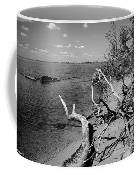 2d Coffee Mug featuring the photograph Driftwood by Brian Wallace