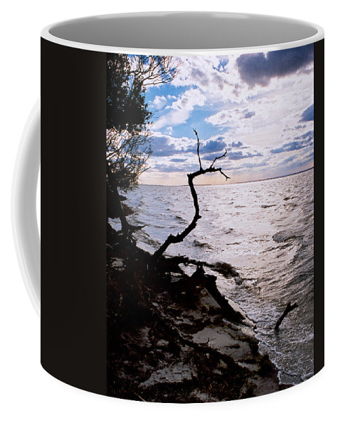 Barnegat Coffee Mug featuring the photograph Driftwood Dragon-barnegat Bay by Steve Karol