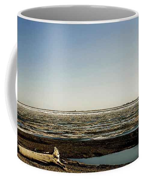 Driftwood Coffee Mug featuring the photograph Driftwood On Arctic Beach by Anthony Jones