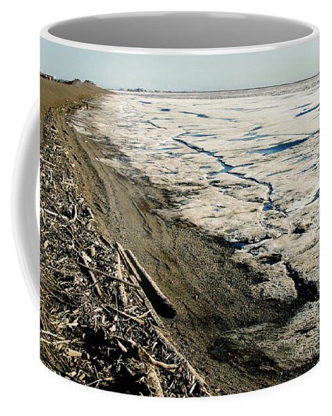 Drift Wood Coffee Mug featuring the photograph Driftwood On The Frozen Arctic Coast by Anthony Jones