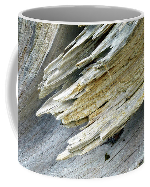 Photography Coffee Mug featuring the photograph Driftwood by Rene Gignac
