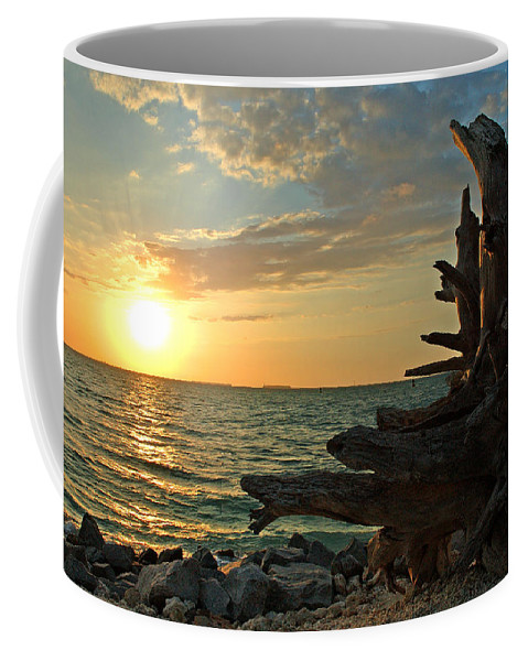 Sunset Coffee Mug featuring the photograph Driftwood Sunset by Susanne Van Hulst