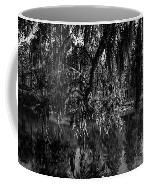 Middleton Coffee Mug featuring the photograph Drippin With Spanish Moss At Middleton Place by Dale Powell