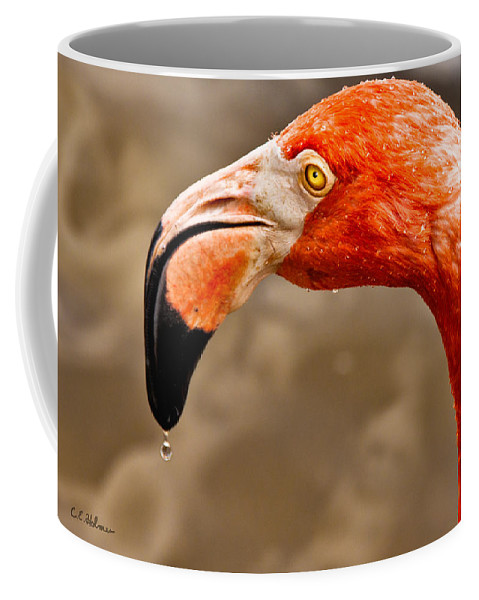 Flamingo Coffee Mug featuring the photograph Dripping Flamingo by Christopher Holmes