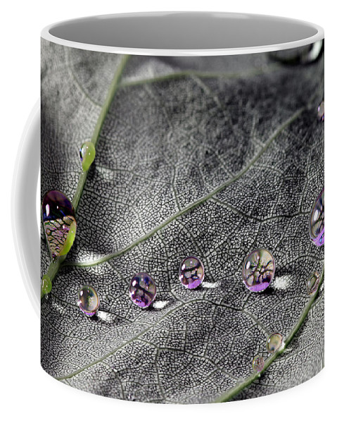 Leaves Coffee Mug featuring the photograph Droplet Stack by Christopher McKenzie