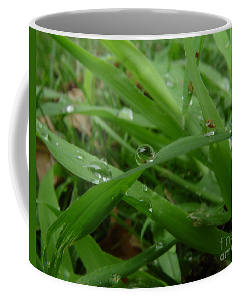 Water Droplet Coffee Mug featuring the photograph Droplets 01 by Peter Piatt
