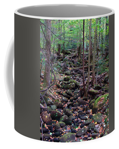 River Coffee Mug featuring the photograph Dry River Bed- Autumn by Nancy Mueller