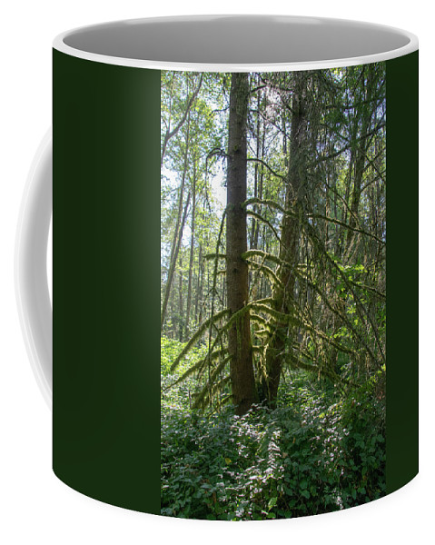 Cougar Mountain Coffee Mug featuring the photograph Dsc_0011 Web by Safe Haven Photography Northwest