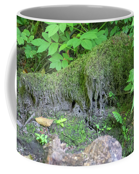 Cougar Mountain Coffee Mug featuring the photograph Dsc_0029 Web by Safe Haven Photography Northwest