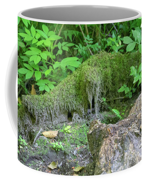 Cougar Mountain Coffee Mug featuring the photograph Dsc_0030 Web by Safe Haven Photography Northwest