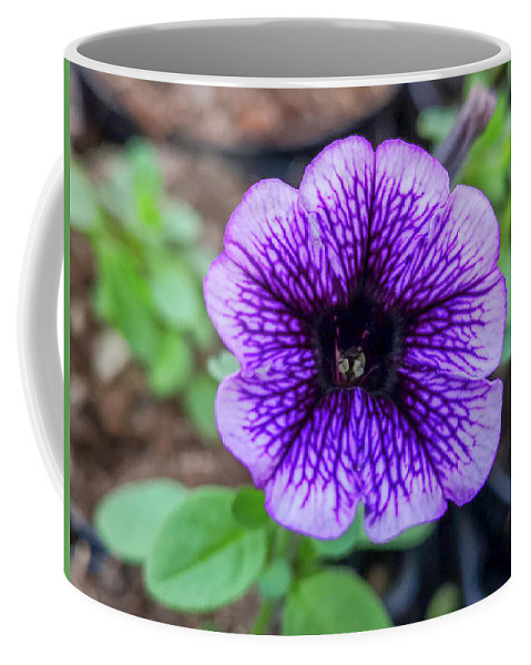Flowers Coffee Mug featuring the photograph Dsc_1513 Web by Safe Haven Photography Northwest