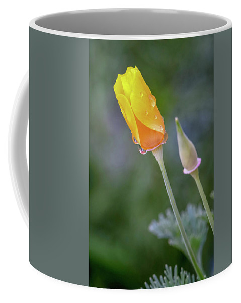Flowers Coffee Mug featuring the photograph Dsc_1517 Web by Safe Haven Photography Northwest