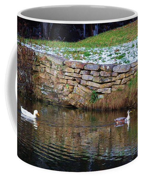 Duck Coffee Mug featuring the photograph Duck Duck by Eric Liller