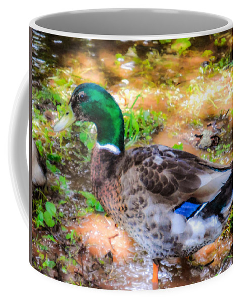 Beak Coffee Mug featuring the painting Duck On The Lake 2 by Jeelan Clark