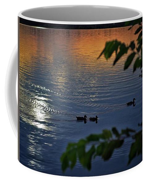 Lake Overholser Coffee Mug featuring the photograph Ducks At Daybreak by Buck Buchanan