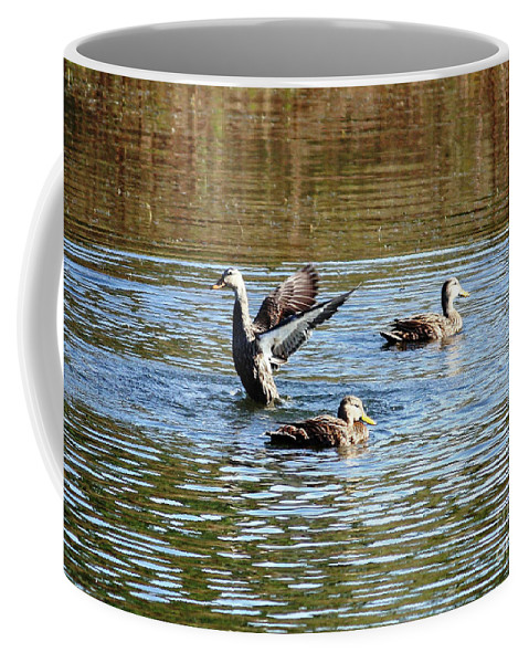 Ducks Coffee Mug featuring the photograph Ducks On Colorful Pond by Carol Groenen